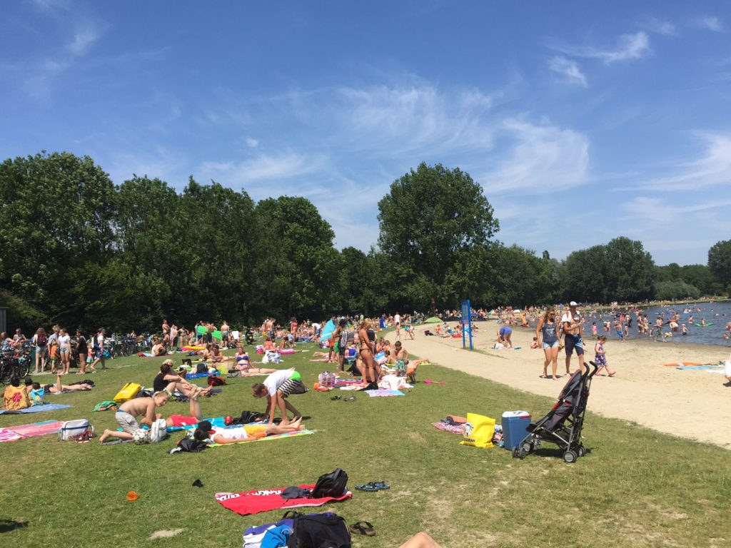 When the temperature finally rises it seems like everybody is rushing to swim and get a suntan in Delfse Hout. (Photo by Oriana van der Sande)