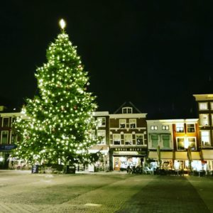 Christmas tree Delft