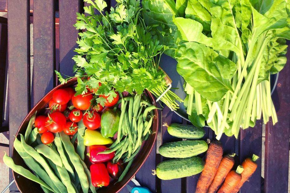 Garden Captures Vegetables